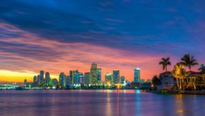 עסקאות פליפ - מיאמי פלורידה